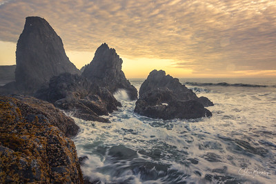 Seal Rock II