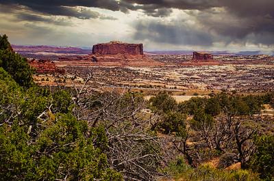 Canyonlands National Park, Moab, UT
