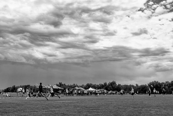 Kite Flyers 2015
