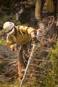 Umpqua NF Fires, 2017, Oregon: Rattlesnake Fire