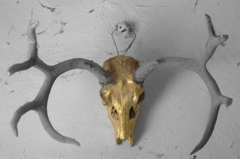 <h1>Foiled....again</h1> Gold foiled skull