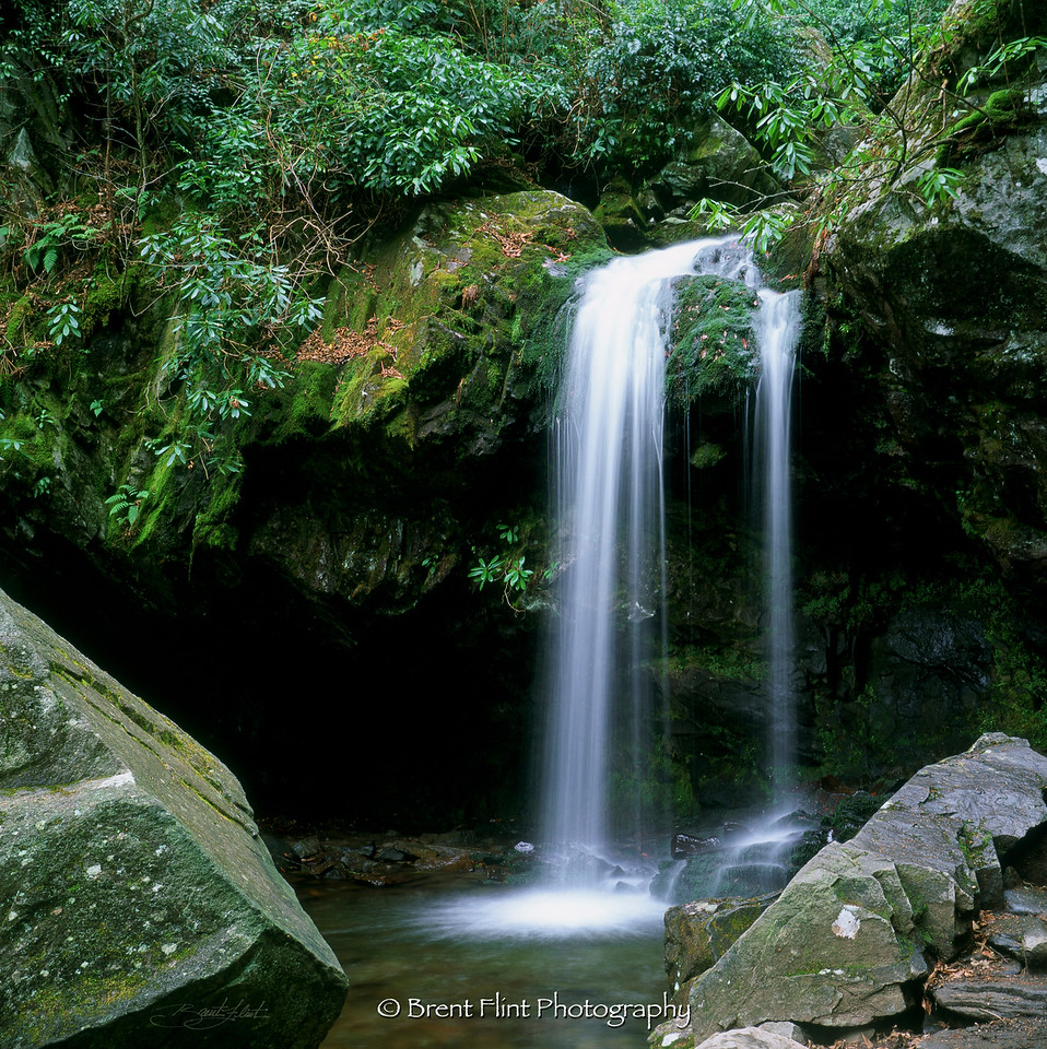 S.2549 - Grotto Falls, Great Smoky Mountains National Park, TN.