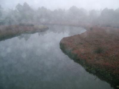 Hawthorne Canal, Glebe 2006–30 x 40cm