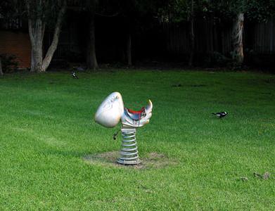 Park birds, Glebe 2003–30 x 40cm