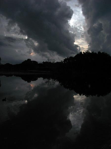 Nightfall, Centennial Park, Sydney 2008–43 x 32cm