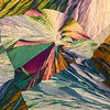 Tartaric Kite
