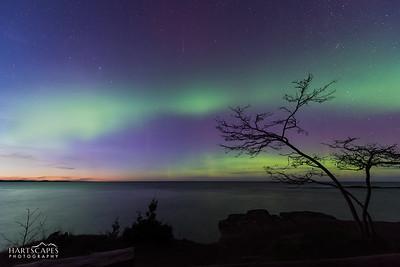 Aurora At Dusk