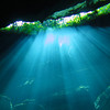Chac Mool cenote - Inside looking out #1 - 0