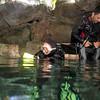 Chac Mool cenote - #2 - preparing - 0