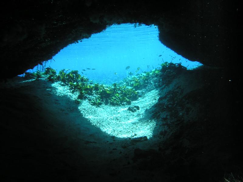 bog cave