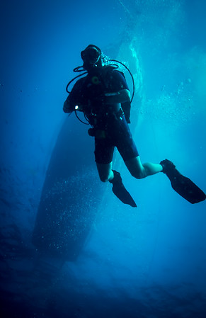 Diver surfacing