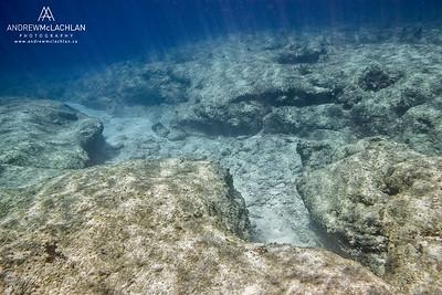 Underwater Scene on Cayman Brac