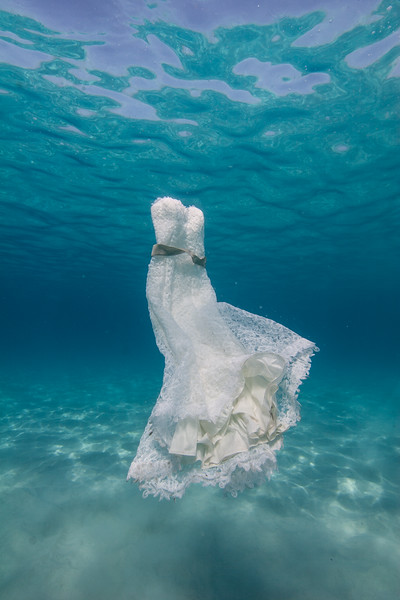 Underwater Wedding Pictures