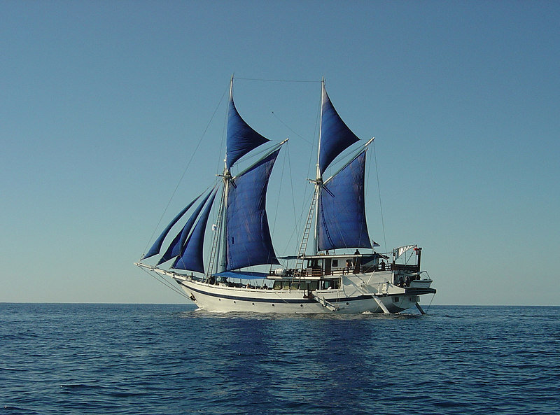 The Komodo Dancer, our home for the week: a great vessel with a superb and attentive crew (photo from Carine Kunz-Jacques, one of the dive leaders)