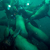 Gord being mobbed by a pack of Stellar Sea Lions (photo courtesy of David Sutcliff)