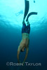 Chang, one of our veteran instructors, freedives.
