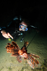 Nick poses with the latest catch, an invasive Lionfish being culled