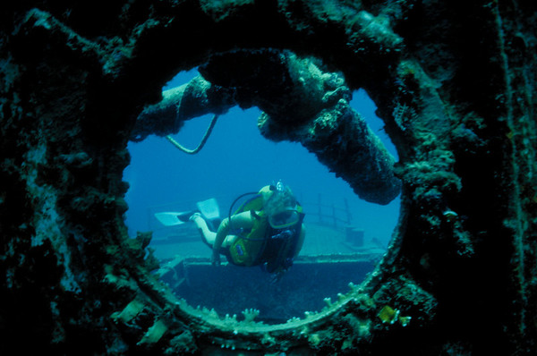 Ocean View Kathy Mullins poses by a porthole on the wreck of the Cartanser Sr. Little Buck Island, USVI  1984 Ken Read Memorial Underwater Photography Competition - Best of Show 1984 Beneath The Sea International Imaging Competition - Second Place, General category http://www.beneaththesea.org/contest.html 1986 New Jersey Council of Dive Clubs Photography Competition - First Place, Wide Angle 1992 Ford Seahorses Underwater Photography Contest - Fifth Place, Wrecks category