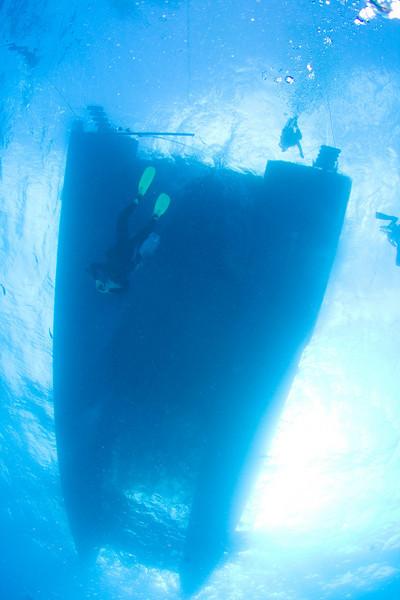 The Aqua Cat from below.
