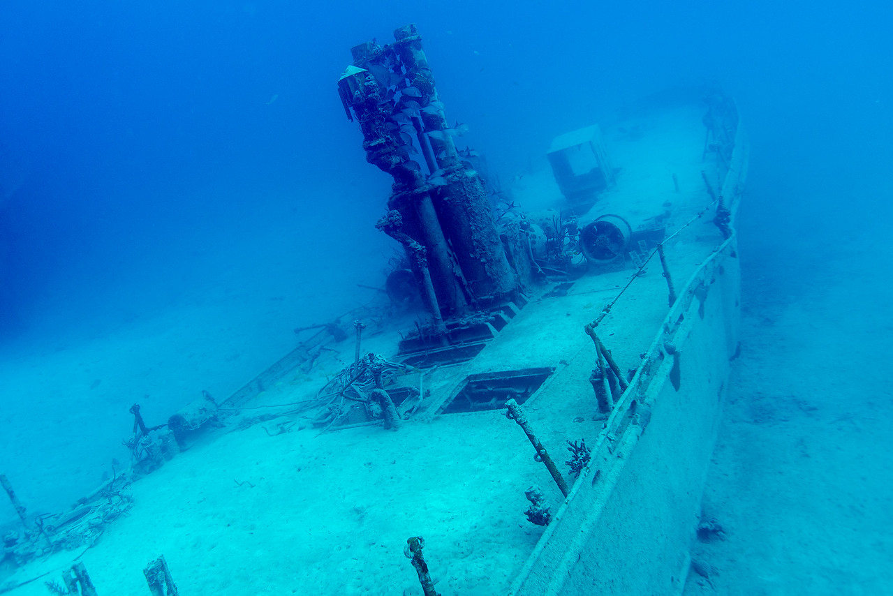 """Steel Forrest"" dive site in Nassau, Bahamas - February 2017"