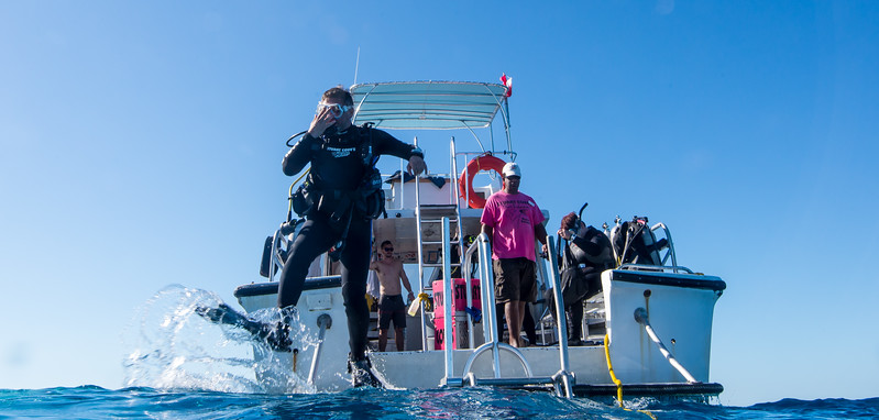 Diver properly entering water near shark dive site in Nassau, Bahamas - February 2017