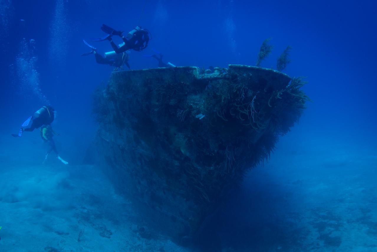 Exploring wreck near shark dive site in Nassau, Bahamas - February 2017