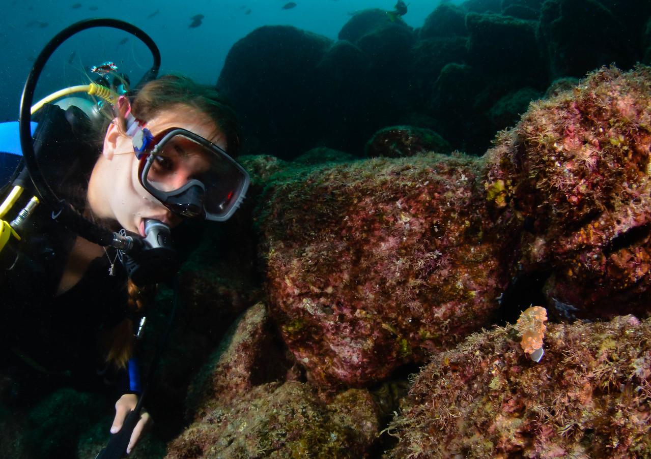 Chromodoris marislae nudibranch and a diver in the Sea of Cortez, Mexico