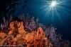 Reef scene with Sun ball behind