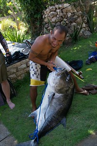 Nusa Paneda giant trevally