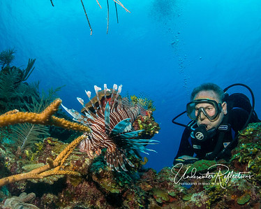 Still life with lionfish and Luke