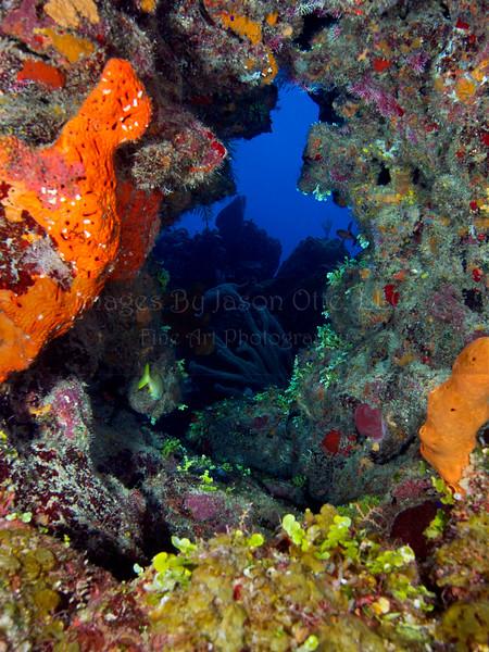 Long Caye Wall 2015-07-08 - 14-50-14
