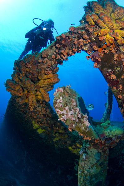 Diver over stern-Hilma Hooker