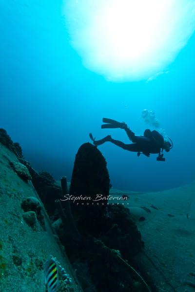 Diver on Hilma Hooker