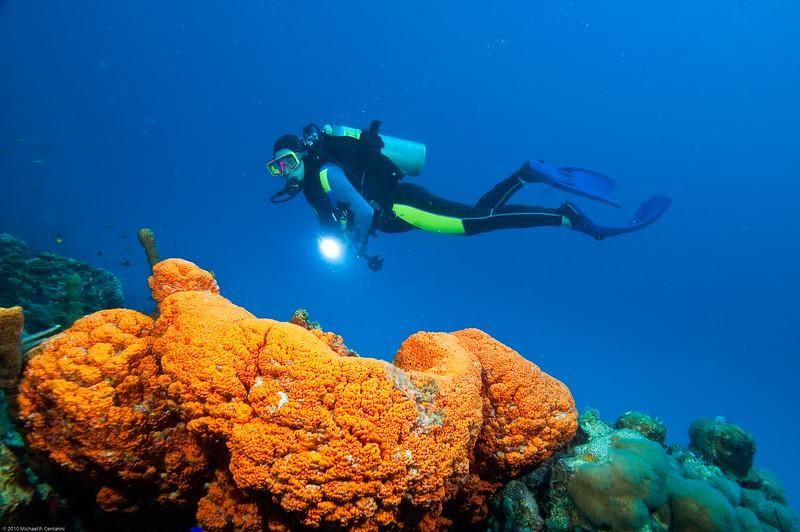 Diver with orange sponge