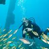 Tim, Underwater photographer