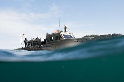 Dive Boat Hurst Isle_DSC1799