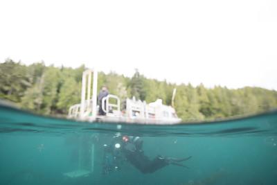 Dive Boat and Diver_DSC1414