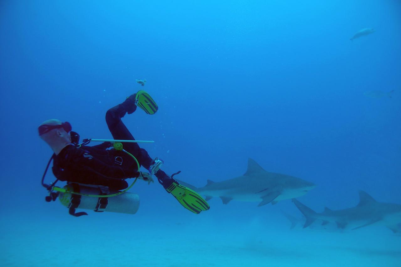 Luis Rivera finning some bait - November 2012