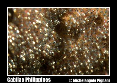 Cabilao Philippines