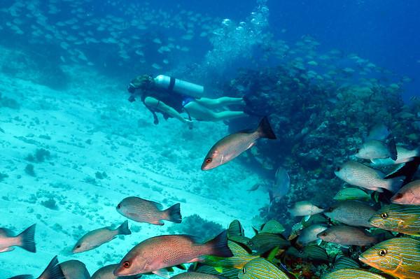 Cancun 2011