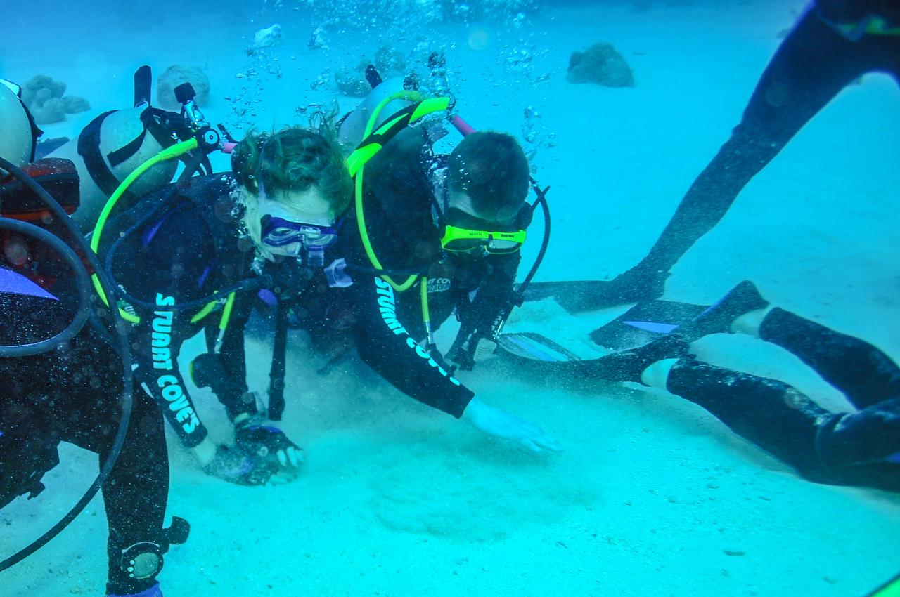 Looking for shark teeth after the feeding, Bahamas - February 2011