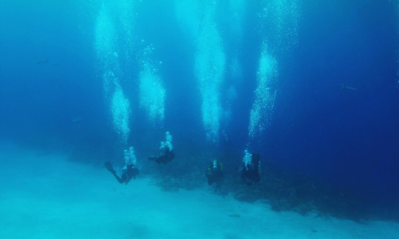 """Heading to """"Shark Arena""""  Bahamas - February 2011"""