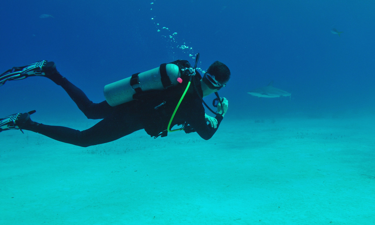 Steve Bond shooting video of approaching Caribbean Reef Shark, Bahamas - February 2011