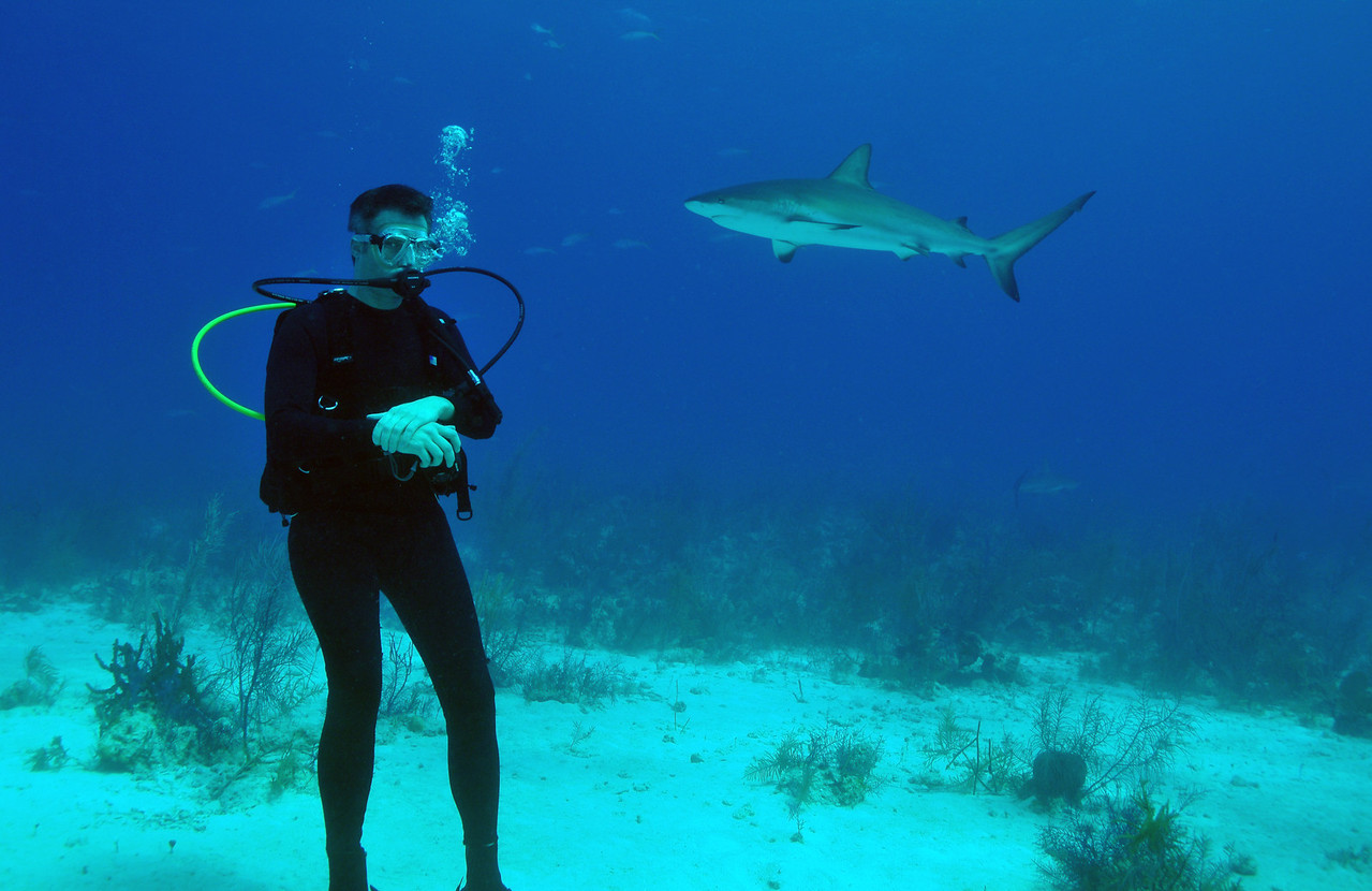 Steve Bond, Bahamas - February 2011