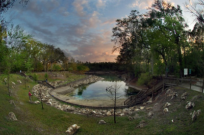 Little River Spring on a quiet evening. Branford, Florida.