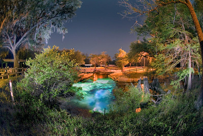 A quiet evening descends over Hart Springs Park in Gilchrist County near Trenton, Florida. This stunning image took photographer Jill Heinerth the course of an evening to capture the magical light in the turquoise spring water.