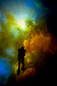 A diver floats in other-wordly colors where the tannic water of the Santa Fe River mixes with turquoise spring water in Devil\'s Ear Spring, near High Springs, Florida.