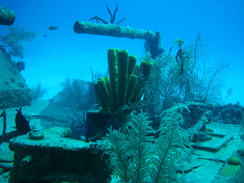 Doc Poulson wreck.  This is an intentionally-sunk boat that originally layed communications cables between the islands.