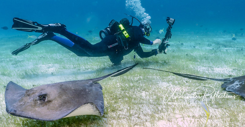 Me shooting stingrays! (photo by crew)