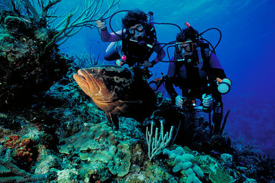Ron and Carol Goldman pose with a friendly Nassau Grouper.